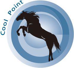 cool-point-znak-towarowy-kancelaria-patentowa-lech